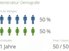 limesurvey_dashboard_demographics